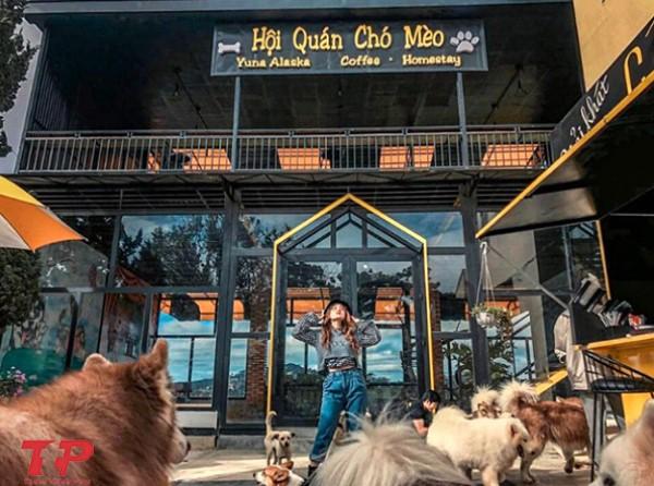 bảng hiệu quán cafe chó mèo